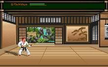 Budokan teh martial spirit