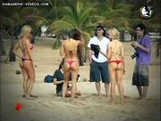 Culos en micro bikini en la playa